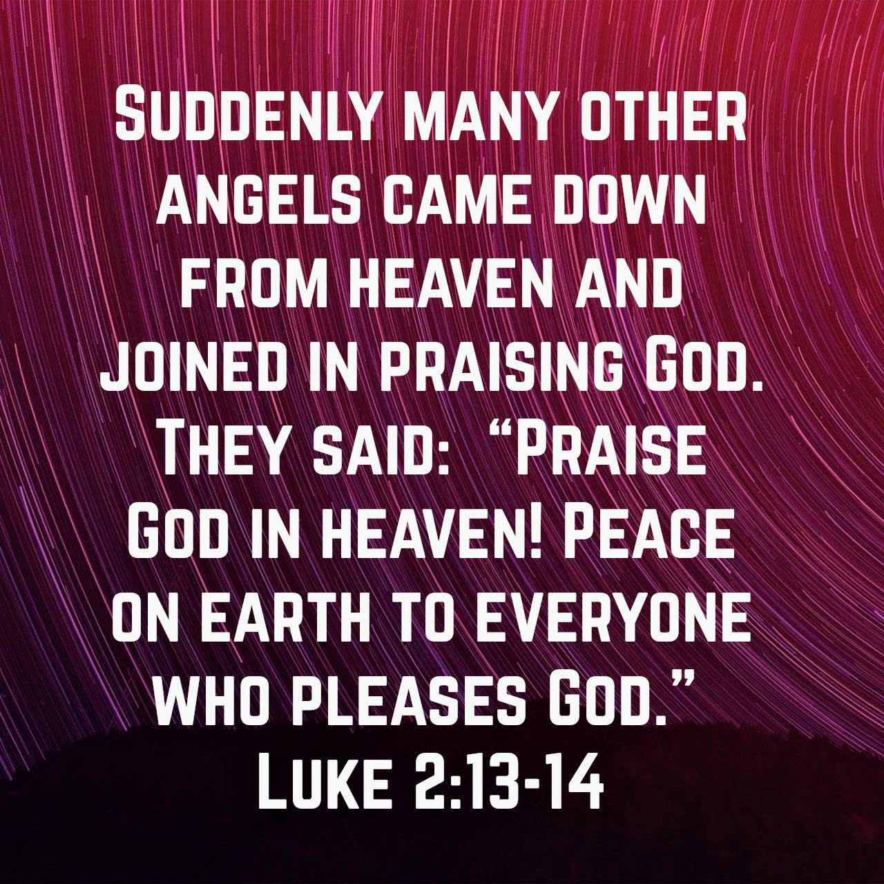 Luke 2:13-14